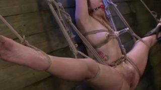 Shibari Gimp Pound Strap-on